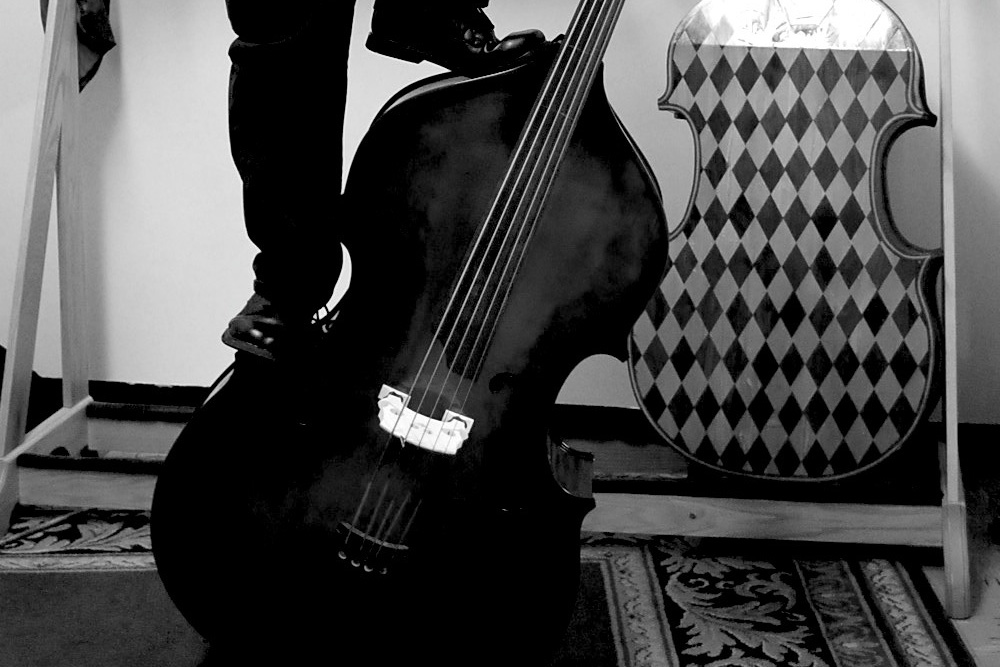 Upright Bass String Length : my double bass setup part 2 number of strings tuning and fingerboard length no treble ~ Hamham.info Haus und Dekorationen