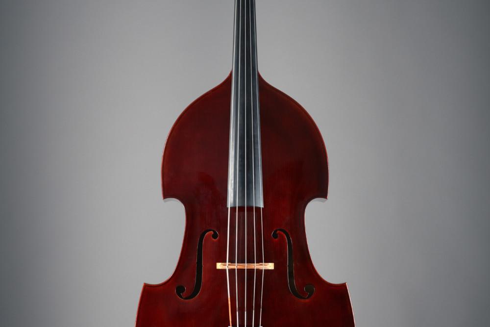 bass of the week kanzian traunsteiner viennese five string bass no treble. Black Bedroom Furniture Sets. Home Design Ideas