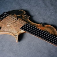 Bass of the Week: Stradi Symphony Stone Bass
