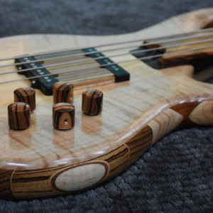 Bass of the Week: LowDown Bass Guitars Special Custom Series 4F Fretless