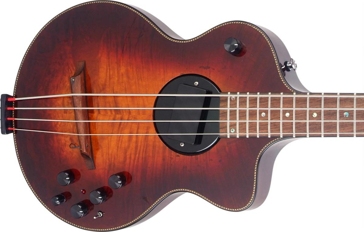bass of the week rick turner guitars model 1 bass no treble. Black Bedroom Furniture Sets. Home Design Ideas