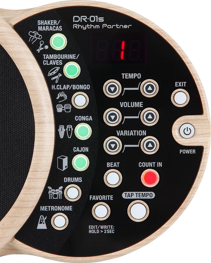 Boss DR-01S Rhythm Partner - Controls