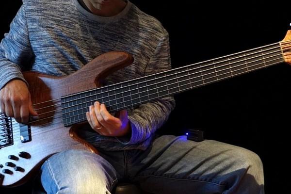 Damian Coccio: Inner Ponds