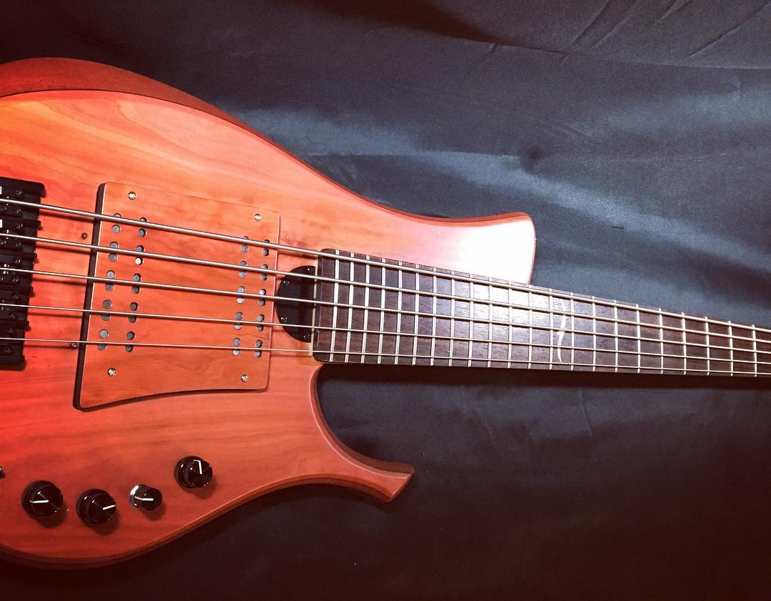 Swan Custom Basses LG II Bass Body 2