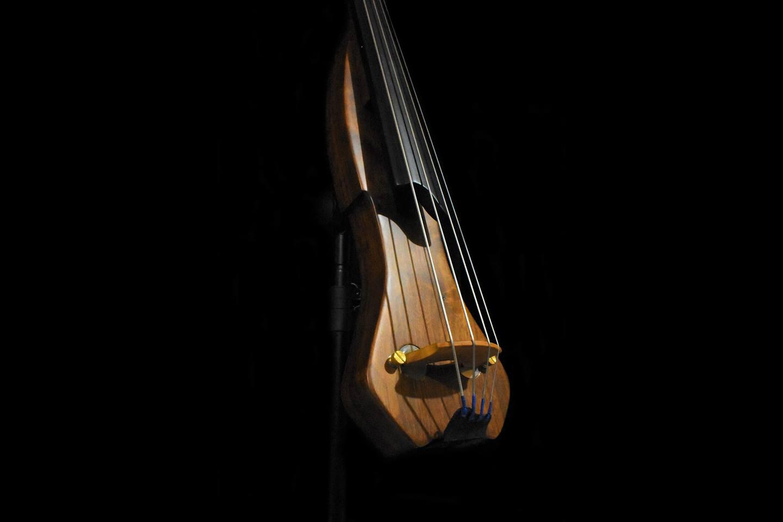 Tamariz Basses Pocket Baby Bass Body