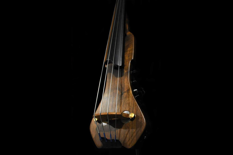 Tamariz Basses Pocket Baby Bass