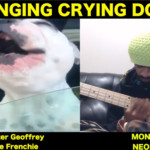 "MonoNeon: ""Singing Crying Dog"" with Walter Geoffrey the Frenchie"