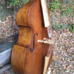 Bass of the Week: Michael Bornhak Viennese Violone
