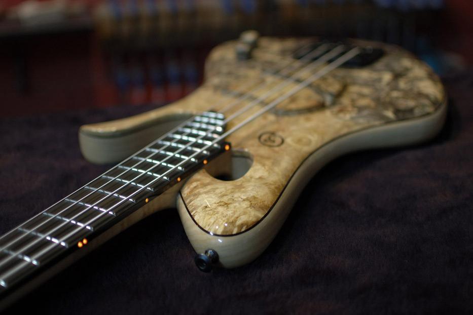 Ele Basses Naga Bass LEDs