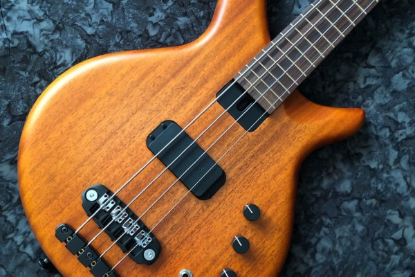 Skjold Design Guitars Introduces the Greyling Bass