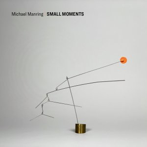 Michael Manring: Small Moments