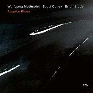 Wolfgang Muthspiel: Angular Blues