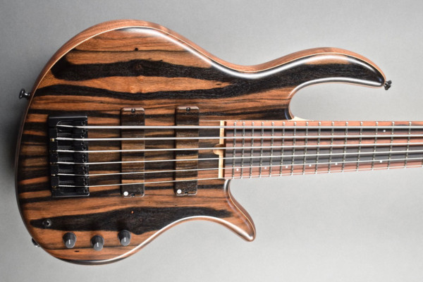 Bass of the Week: Elrick Bass Guitars Gold Series Custom SLC I
