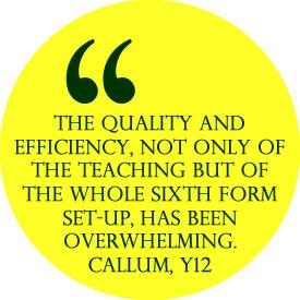 quality2 web