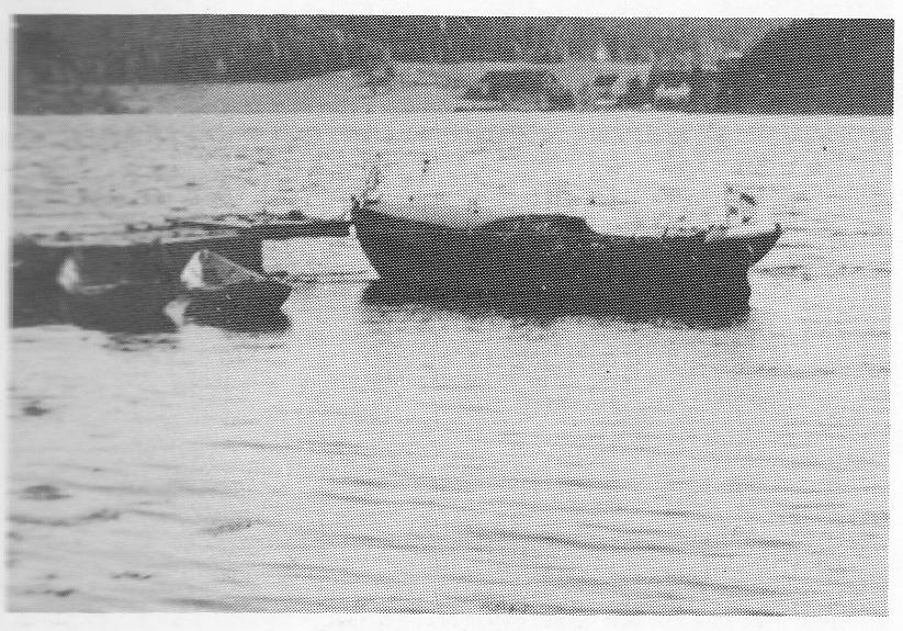 Flyktning til Koster med «Harry» og Ragnvald