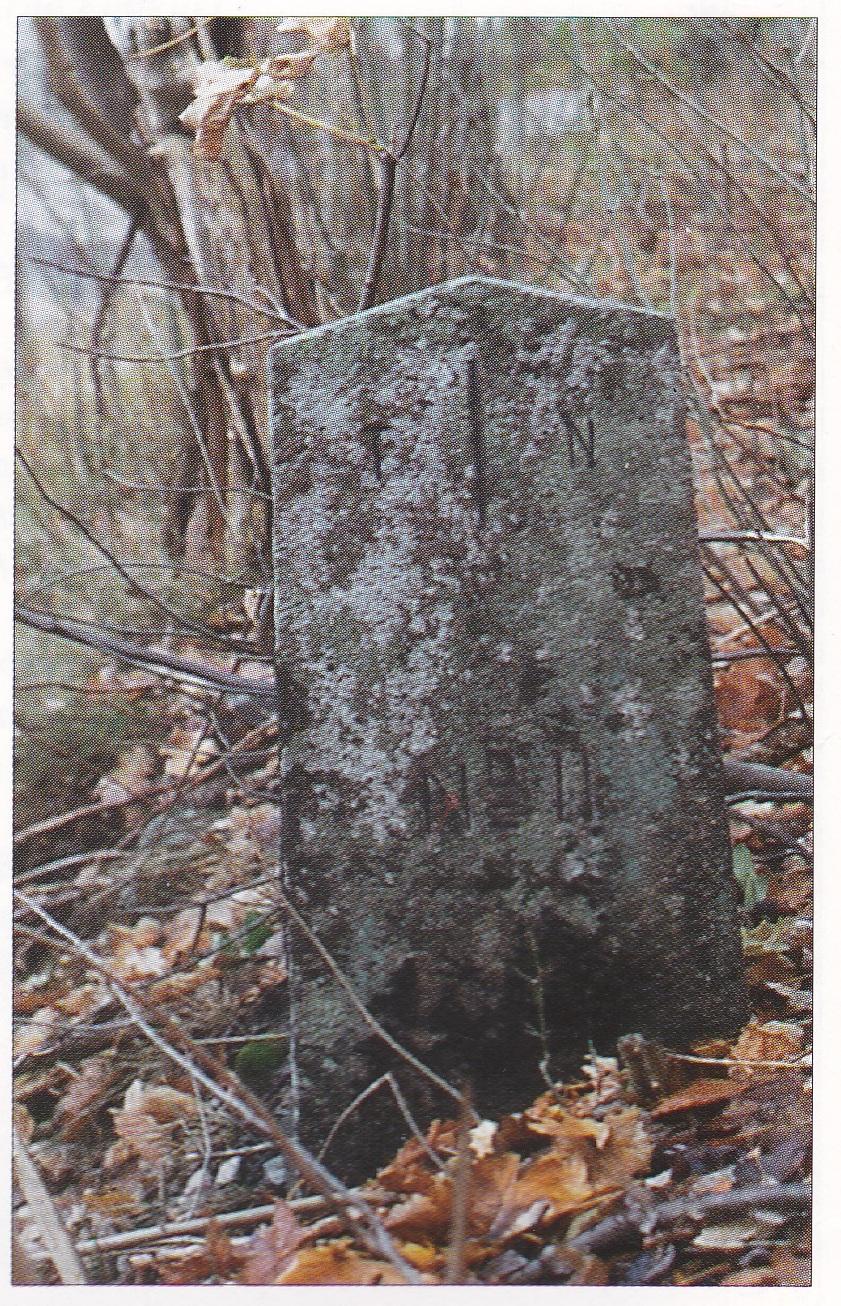 «..ut um Steinin oc after Teikar» – da nordre Nøtterøy forsvant
