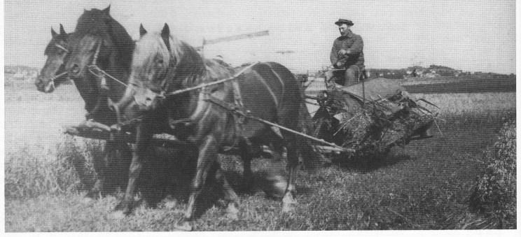 Nøtterøys aller første selvbinder styrt av Karl Ludvig Larsen i 1928. Selvbinderen ble anskaffet av gårdene østre Sem og K jernås i kompaniskap. Maskinen var en så stor sensasjon at skolebarna fikk fri for å betrakte vidunderet.