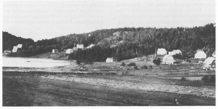 Søndre Munkerekka ca. 1930. Var det her munkenes dyr beitet?