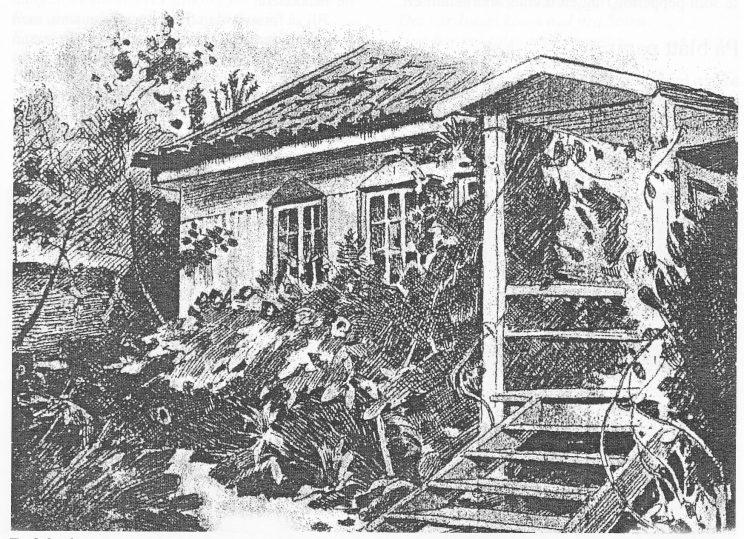 Et fiskerhjem paa Bolærne, er tittelen på denne tegningen av Olaf Krohn (Fra Folkebladet 15. juli 1893.)