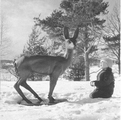 Rådyrskulpturen i bronse som ble gitt pleiehjemmet av Gipø-damen Beatrice Gundersen i forbindelse med innvielsen i 1963. Skulpturen er laget av Carl E. Paulsen i 1962. (Foto: Norvald Fuglestrand.)