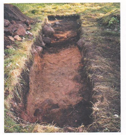 Felt HII, 1999. Etter at steinene i den øvre del av vollen er fjernet ses tykke røde sand/gruslag: Naermest L8/99. Svake fargeforskjeller indikerer skillet mot L6/99 og L12/99. den mørke stripen som krysser feltet er bunnen av L7/99. Deretter følger L 13/99 mot ytterkant av vollområdet. I bakgrunnen er det skogsjord. (Foto: Eli Ulriksen.)