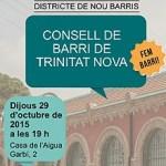 Consell de Barri de Trinitat Nova