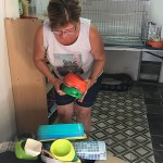 Rescat paralitza l'esterilització de gats de carrer en perdre el local