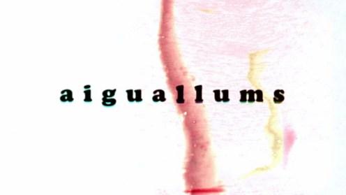 'Aiguallums', serie documental dirigida por Enrique Villalonga y producida por Filmótica.