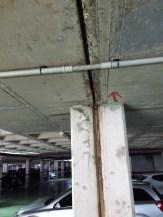 Las goteras denunciadas por Epic en el parking de sa Colomina.