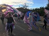 Carnaval Sant Joan 2018 13