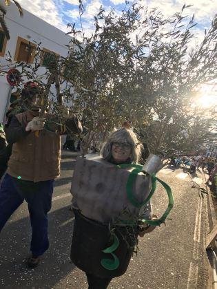 Carnaval Sant Joan 2018 25
