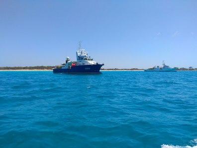 Atuneros fondeados sobre posidonia oceánica en Formentera.