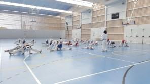 Sessió de taekwondo a es Puig d'en Valls.