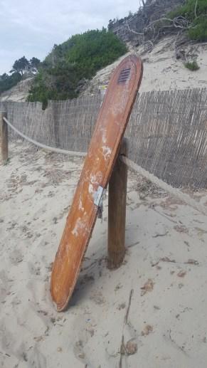 Restos de madera del barco. Foto: E. Cardona.