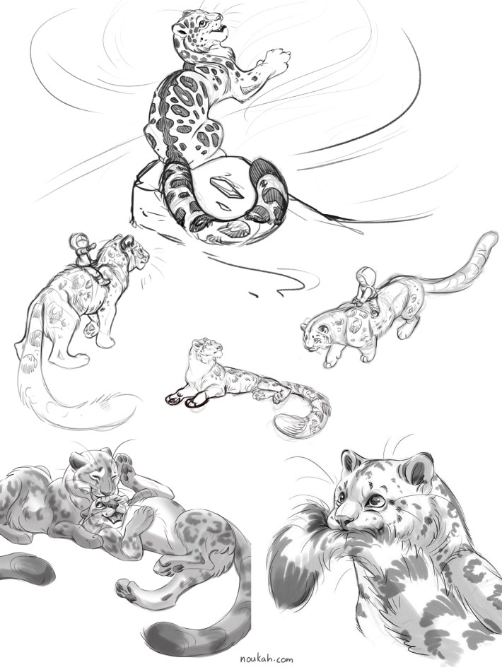 snow leopard sketches digital art noukah