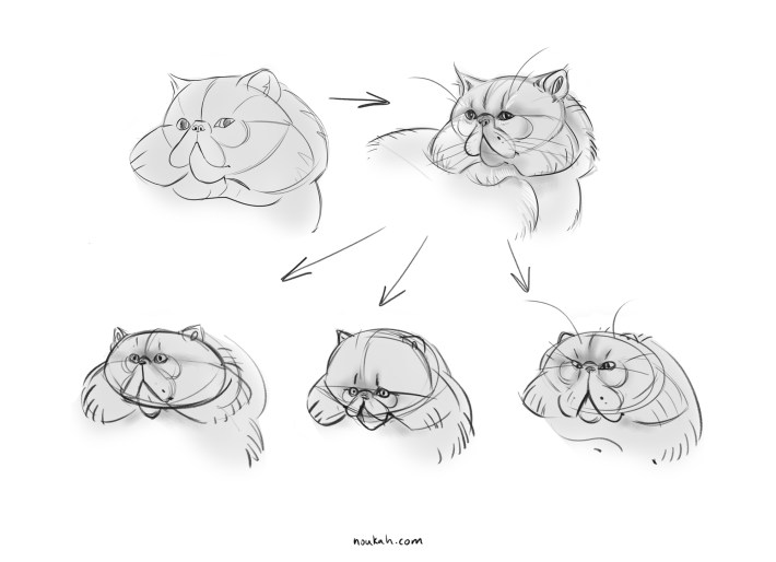 cat sketches character design