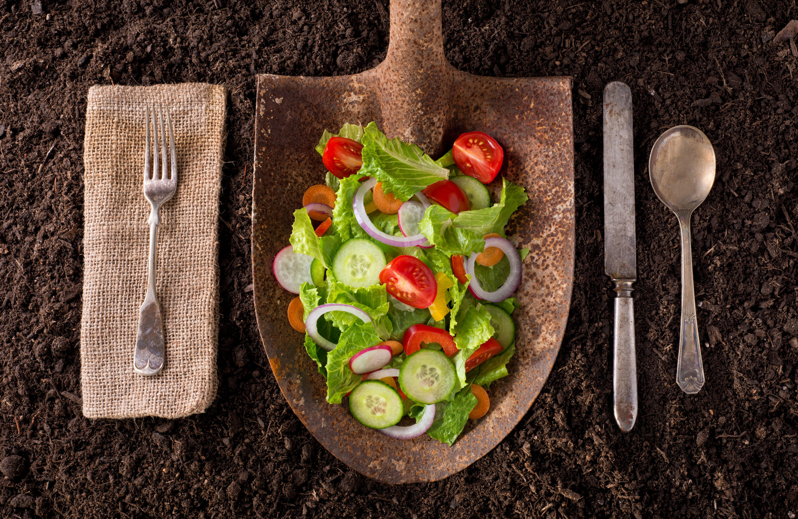 A shovel of salad with a place setting