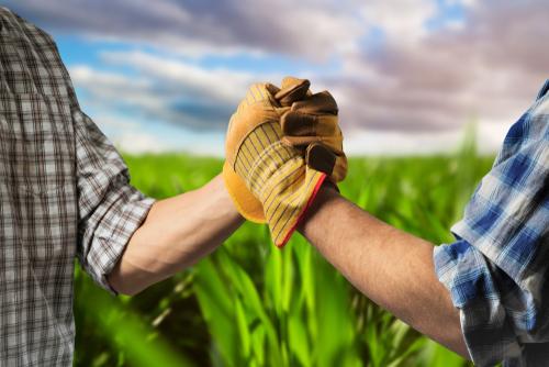 Two farmers locking hands in a field