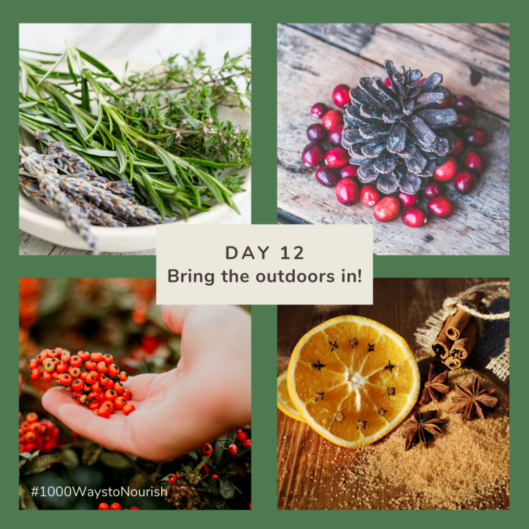 Day 12 - Advent - Bring the outdoors in