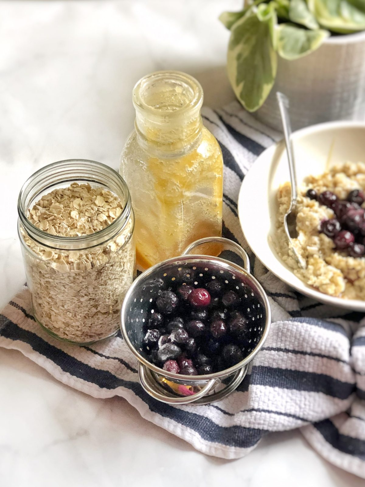 Honey & Blueberry Sprouted Oatmeal