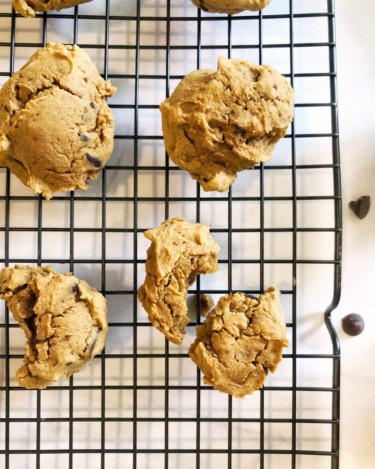Gluten Free Soft Pumpkin Chocolate Chip Cookies