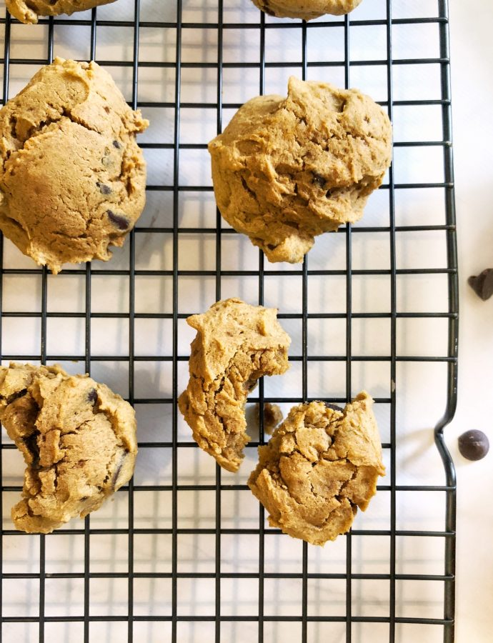 Gluten Free Soft Pumpkin Chocolate Chip Cookies