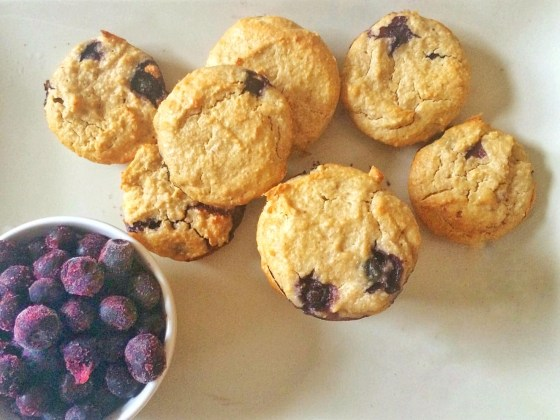 Healthy Blender Blueberry Oat Muffin Recipe