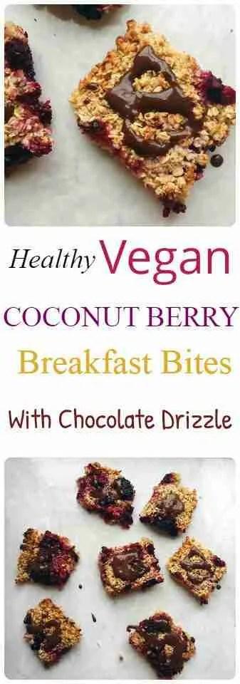 Vegan Coconut Berry Breakfast Bites Recipe