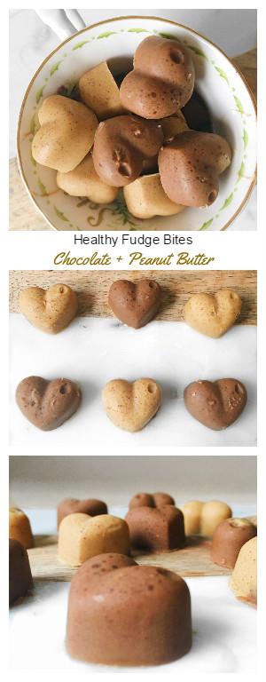 Healthy Fudge Bites Recipe! Chocolate and Peanut butter flavour. Vegan + Gluten Free