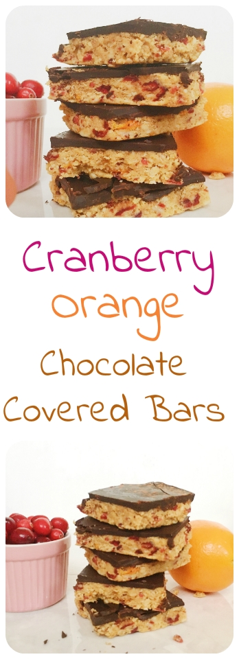 No Bake Chocolate Covered Orange Cranberry Bars.jpg 7