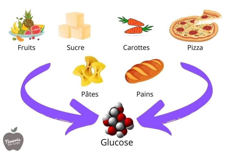 Les aliments qui se transforme en glucose