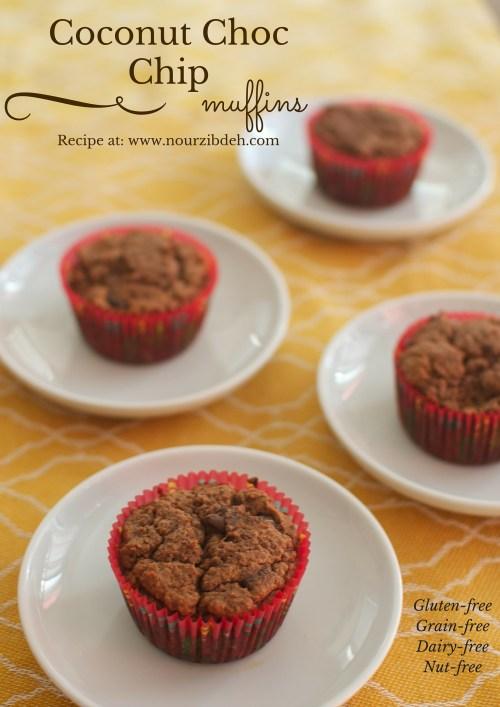 Coconut Choc Chip muffins 2