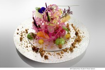 Mr. Kei Kobayashi - Salade au saumon fume