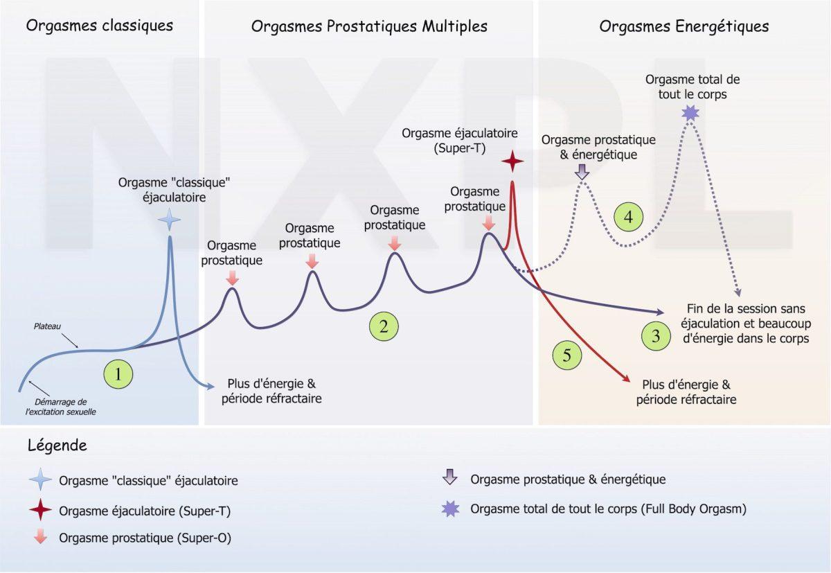 Voici la courbes des orgasmes pour les hommes et les différents orgasmes prostatiques et énergétiques